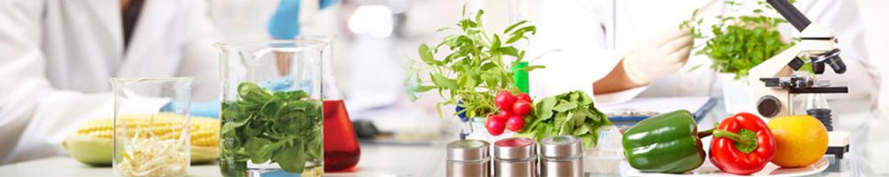 Banner - Food Testing